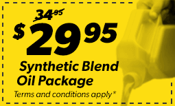 $29.95 Synthetic Blend Package Coupon