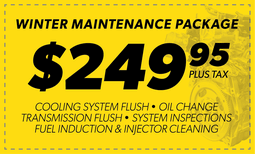 $249.95 Winter Maintenance Package Coupon